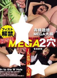 優等生MEGA2穴 拳交解禁 有本紗世