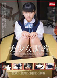 美少女調教 被監禁在瓦楞紙箱裡的女高中生つな