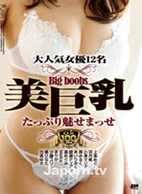 KIRARI DV 08 大人氣女優12人 盡享美巨乳 : 上條めぐ 羽月希 小