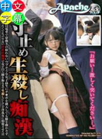 滿員電車上,女學生被色狼騷擾。侵犯升級,肉棒插入。漸