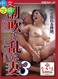 潮吹迭起的淫蕩人妻   和泉紫乃