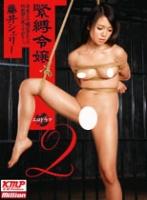 緊縛令嬢 2 藤井シェリー