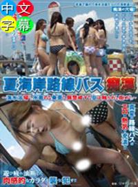 夏天海岸觀光巴士癡漢 ~下海游泳後穿著泳裝乘車的少女被